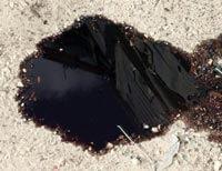 Oil Leak Spot